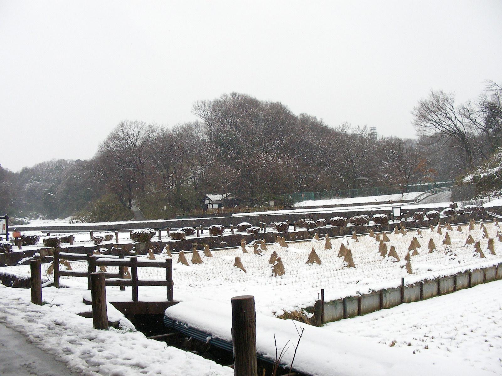 雪の寺家ふるさと村
